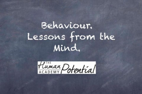 Behaviour. Lessons from the Mind.